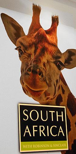 affiche afrique du sud vinexpo 2009 marketing vin