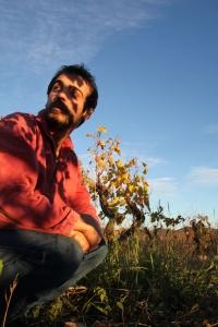 ivo-ferreira-vigne-montpeyroux