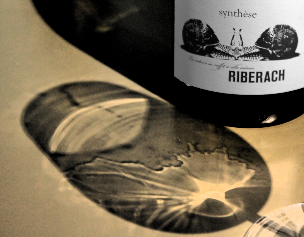 riberach synthese vin belesta