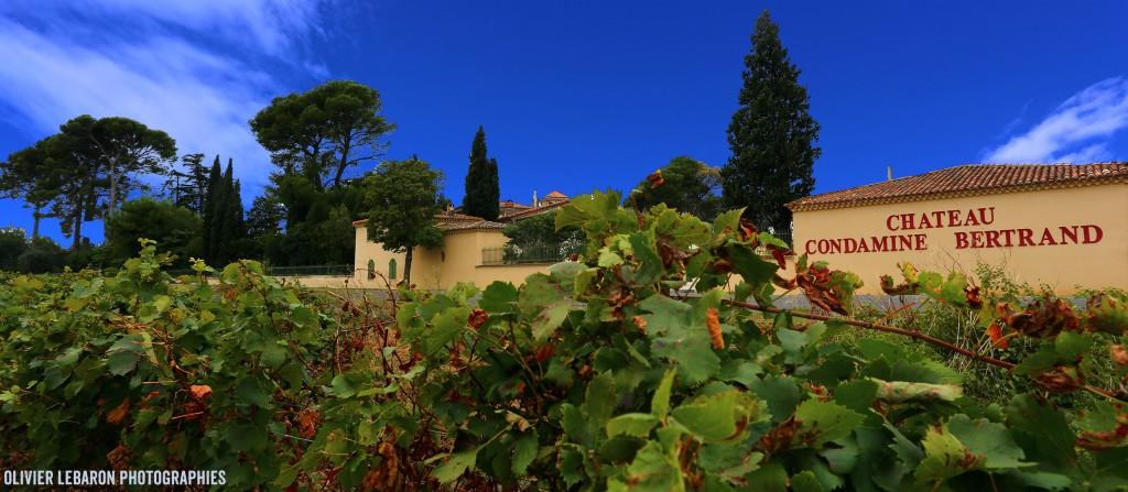 chateau condamine bertrand pézenas languedoc domaine viticole