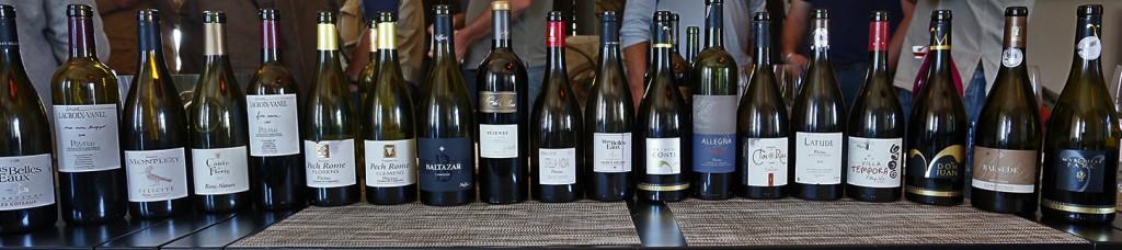 panorama bouteilles vins pézenas languedoc aoc