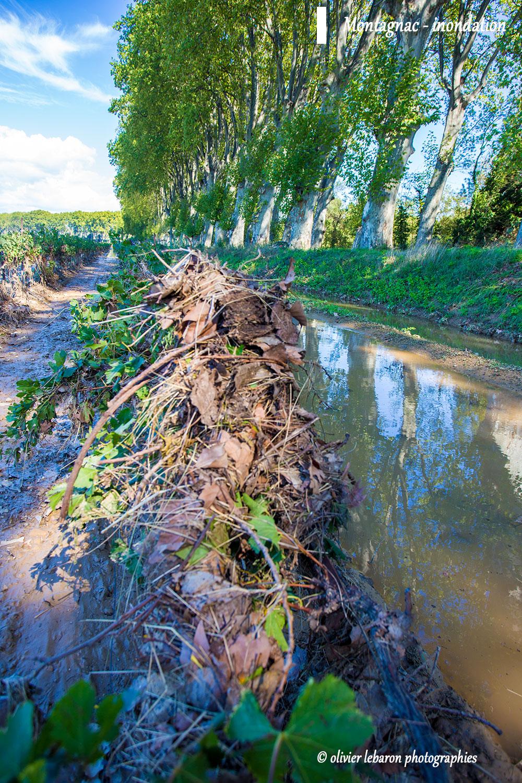 photo-inondation-crue-montagnac-vignoble-hérault