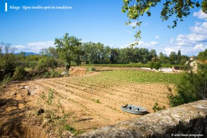 inondation montagnac pézenas hérault vigne