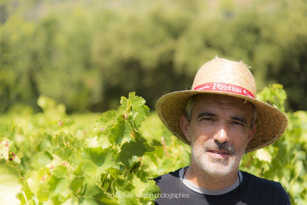 herve tabar pézenas vigneron